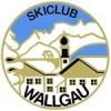 Skifahrer werden im Sommer gemacht – 1.SommerCup 2018 des SGW